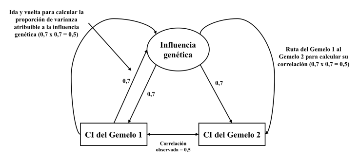 Figura A