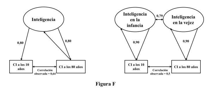 Figura F