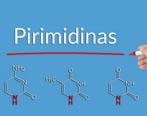 Pirimidinas